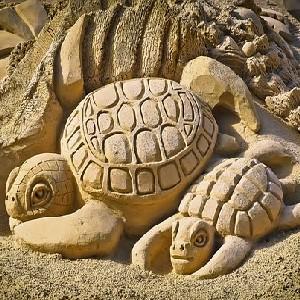 Port Aransas Sandfest!